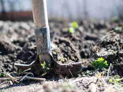 Tecnogea Accreditata Per Servizi Di Consulenza In Agricoltura